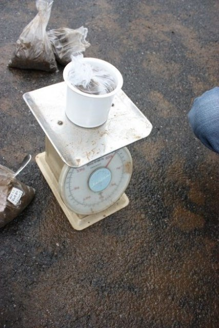 5. 計測に使用する土壌は各地点ごとに500g。乾燥させて水分を飛ばし質量を均一にすることが望ましいが、検査に一定の効率性を保つ観点からは現実的ではなく、今回はテストケースも兼ねて容器の大きさと重さで揃える。