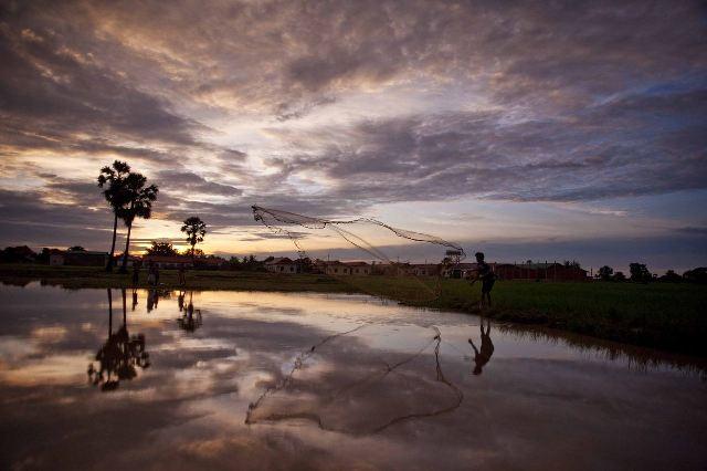 雨季の日課は、朝の魚捕りから始まる